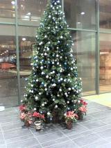 cristmas_tree.jpg