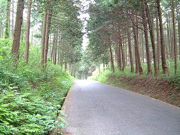 房総林道ツー